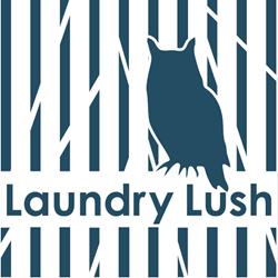 さいたま市のコインランドリー|Laundry Lush(ランドリーラッシュ)